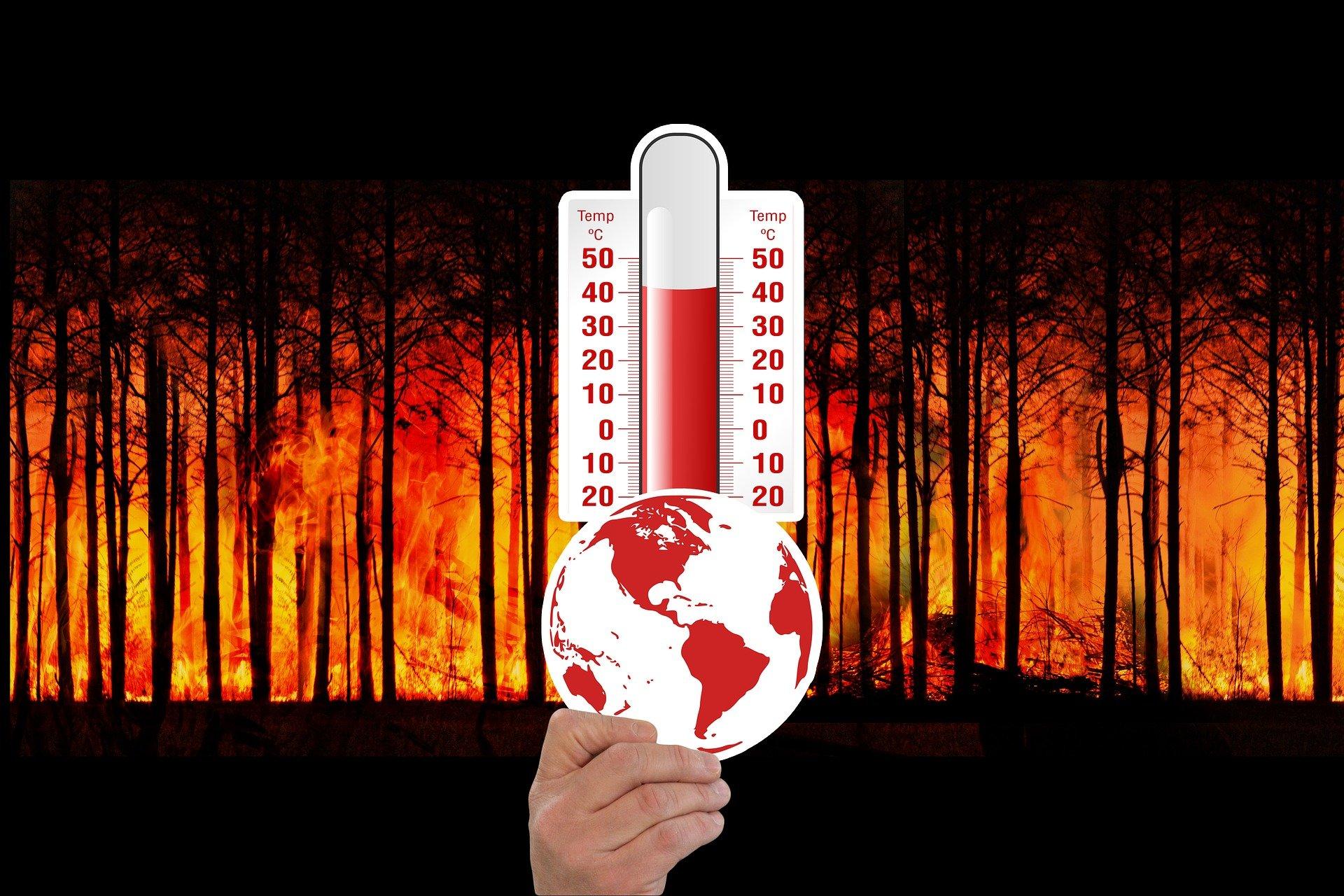 Vorhersage des Waldbrandgefahrenindexes